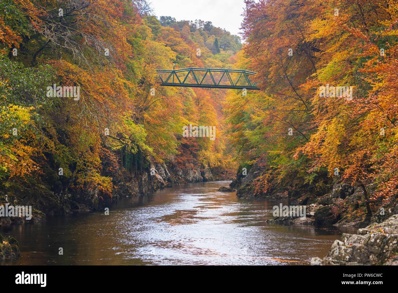 Couleurs d'automne spectaculaire entourent une petite passerelle traversant la rivière Garry à Killiecrankie, le célèbre le Perthshire beauty spot. Banque D'Images