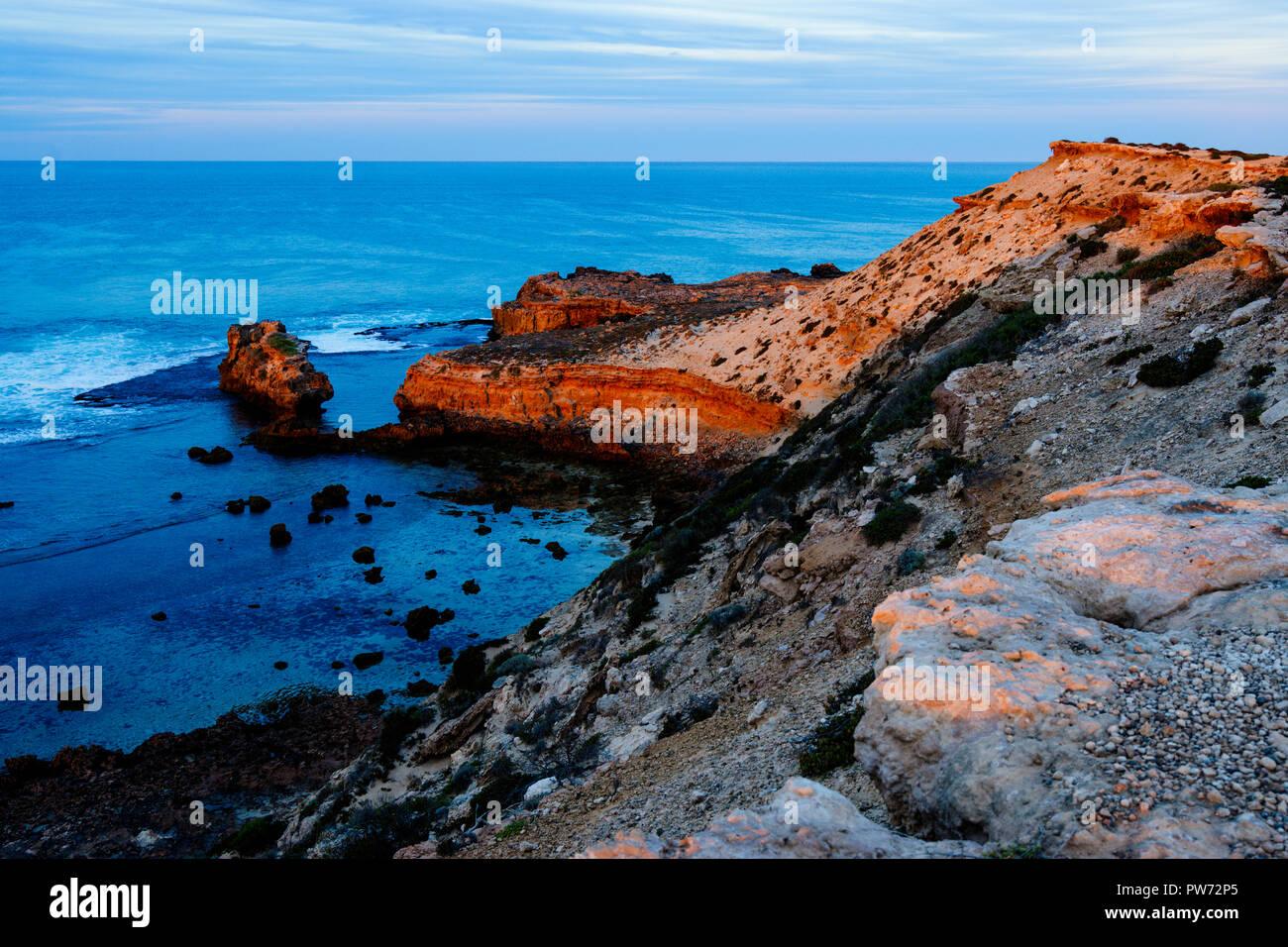 Vue sur les falaises côtières le long de la falaise de la baie anxieux de boucle. Elliston Australie du Sud Banque D'Images