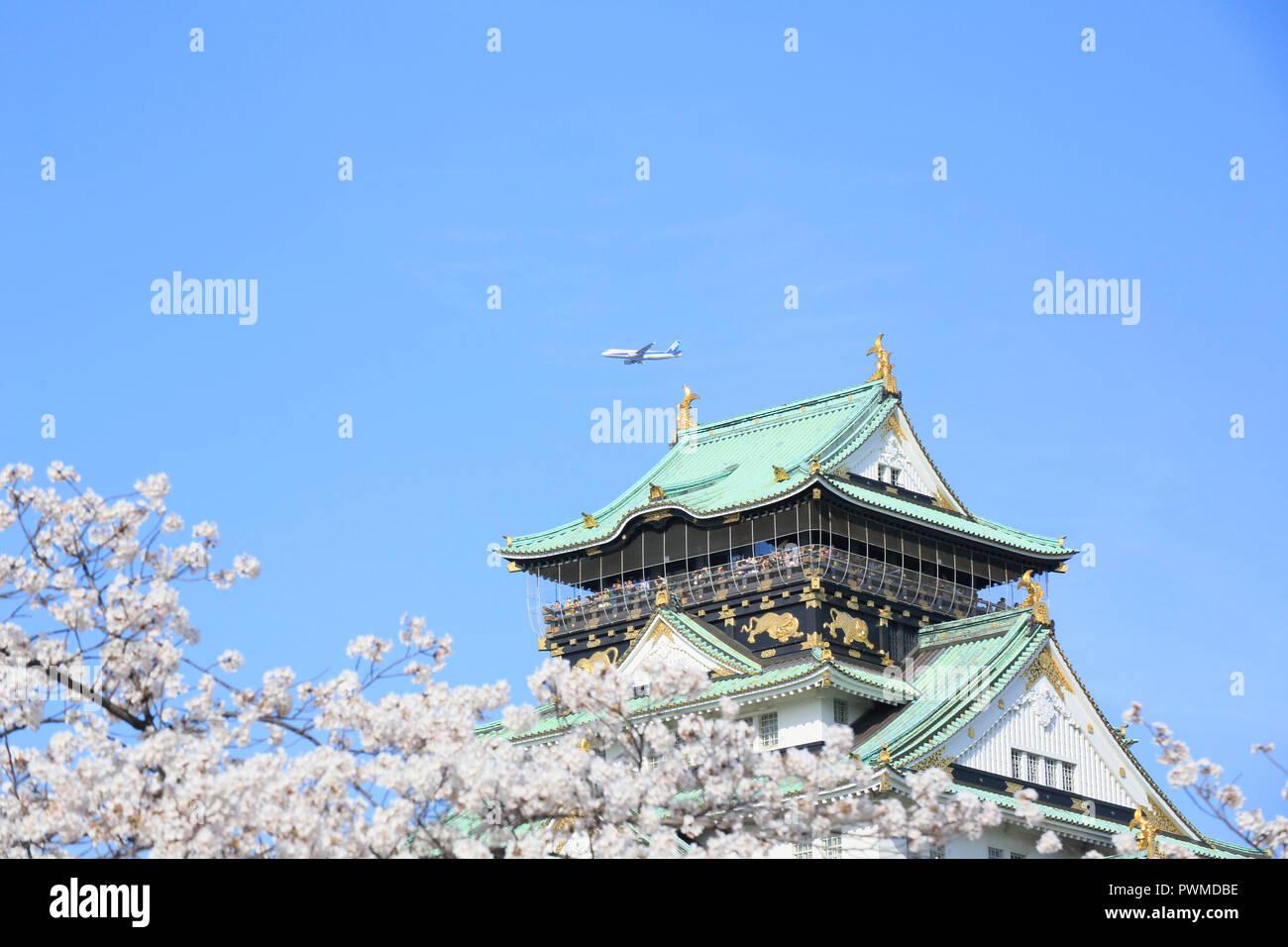Le Château d'Osaka et fleurs de cerisier Banque D'Images