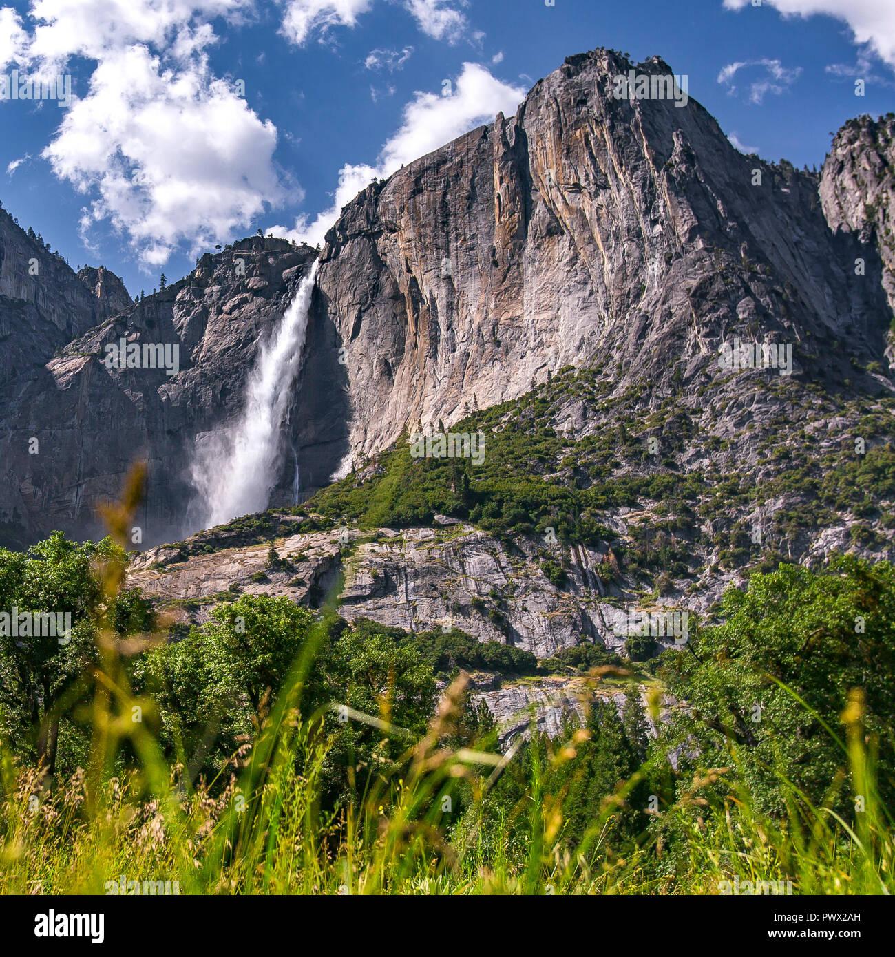 Magnifique vue sur le parc Yosemite Falls sur une journée ensoleillée Photo Stock