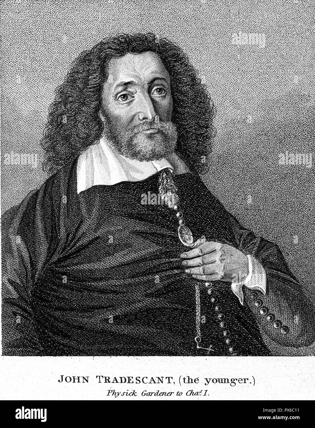 Le jeune JOHN TRADESCANT (1608-1662) Botaniste et jardinier Anglais Photo Stock