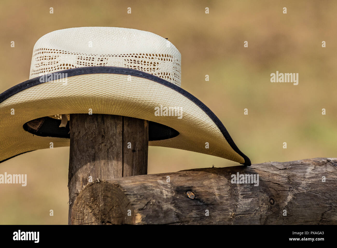 4f02137b54f3a Chapeau de cowboy Blanc de l'Ouest américain, a chuté en signe d ...