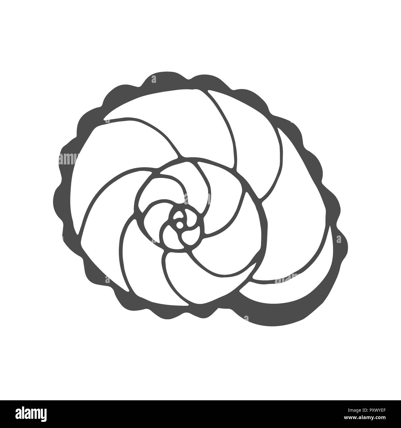 Coloriage Adulte Spirale.Vector Spiral Doodle Illustration Coloring Photos Vector Spiral