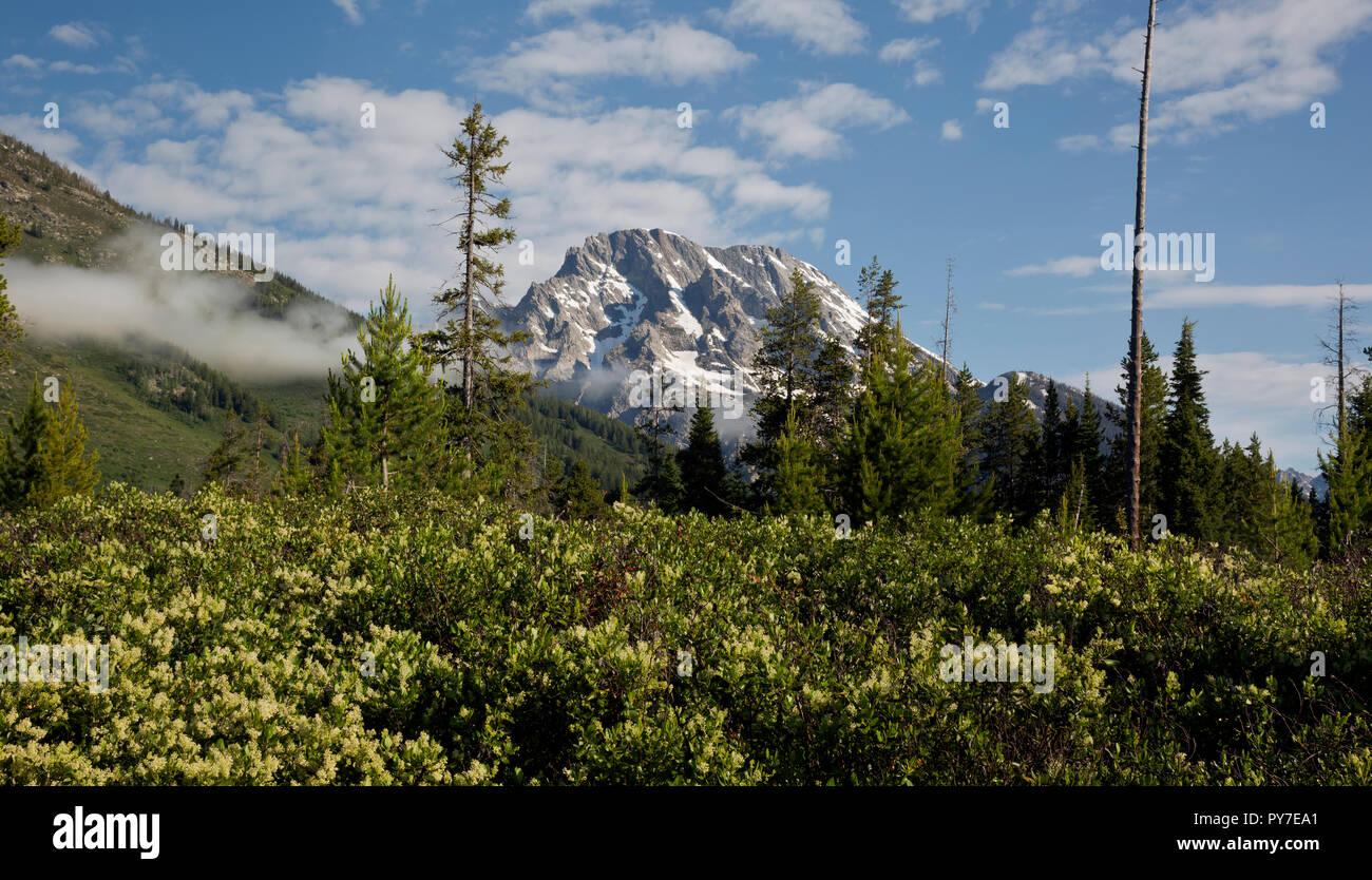 WY02510-00...WYOMING - Vue depuis le Pinceau Canyon Trail à Grand Teton National Park. Banque D'Images
