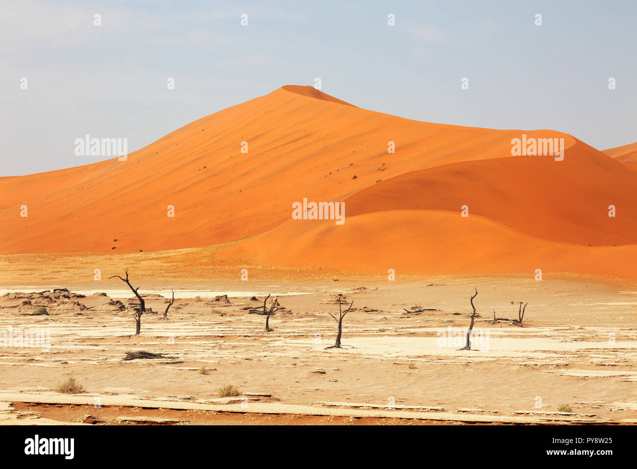 La Namibie désert - dunes de sable de Sossusvlei, Désert du Namib paysage , la Namibie, Afrique du Sud Banque D'Images