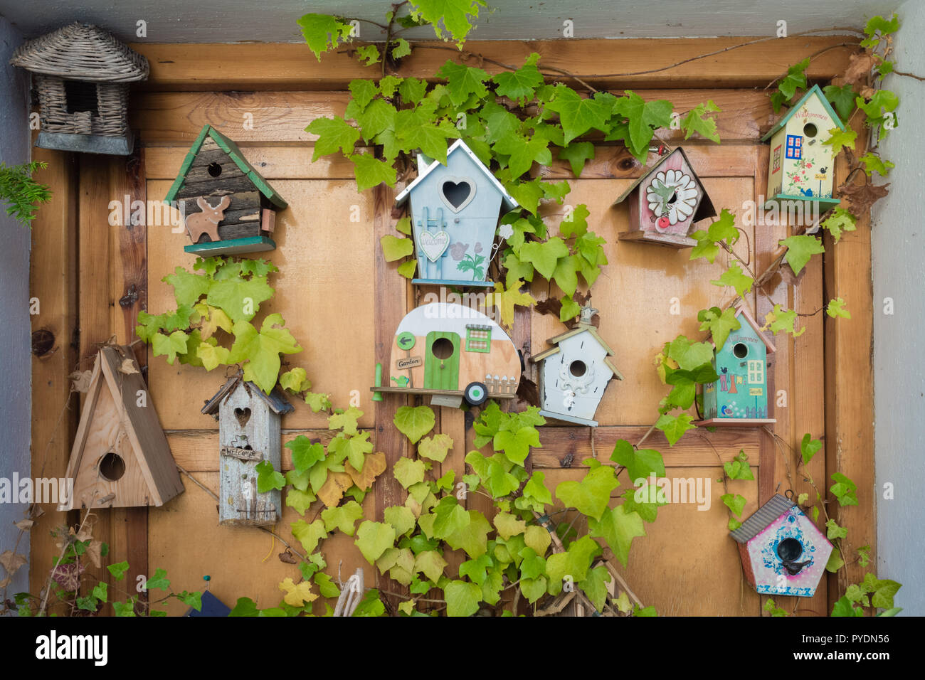 Nk51 Nichoir Nid Cabane Oiseau Bois Couleur Pet Supplies