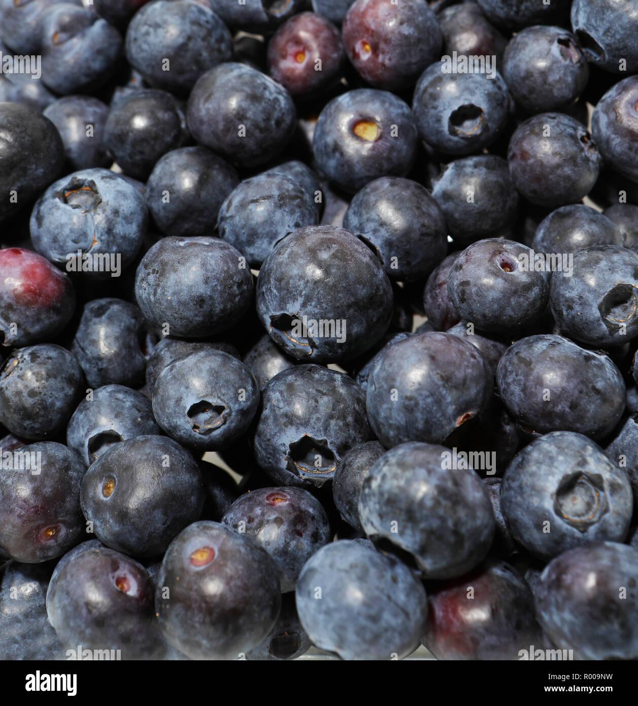 Les bleuets. Antioxydant. Concepts de fruits. France Photo Stock