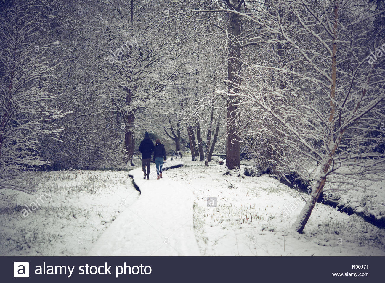 Couple walking in park en hiver Photo Stock