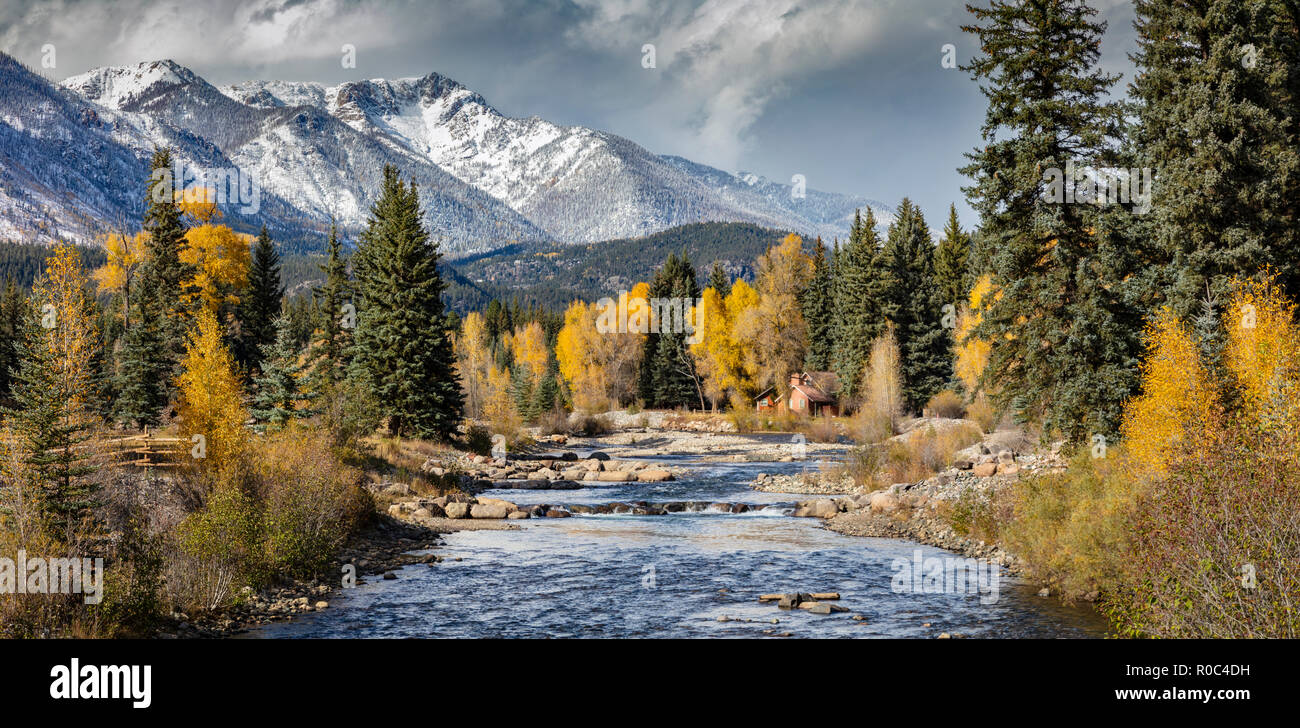 L'automne dans la Forêt Nationale de San Juan (près Vallecito Res), Colorado Photo Stock