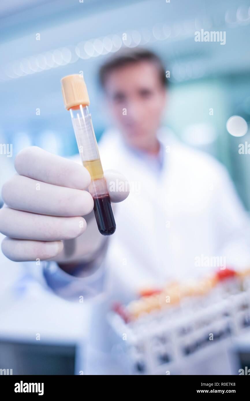 Assistant de laboratoire mâles holding test tube. Banque D'Images