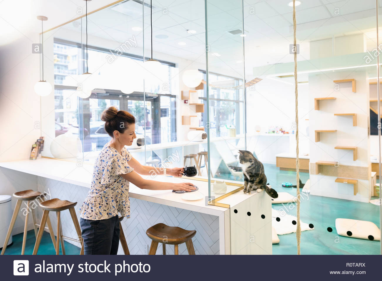 Cat Woman drinking coffee at cafe Photo Stock