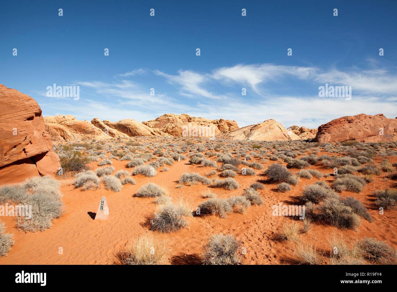 Le Rainbow Vista sentier dans la Vallée de Feu State Park dans le Nevada est un sentier de randonnée modérée dans les zones arides et des conditions chaudes Banque D'Images