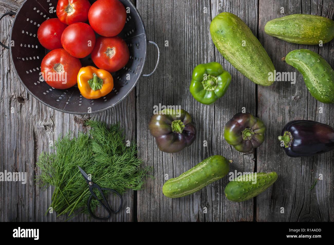 Les concombres, poivrons, tomates et l'aneth sur une planche en bois rustique. Banque D'Images