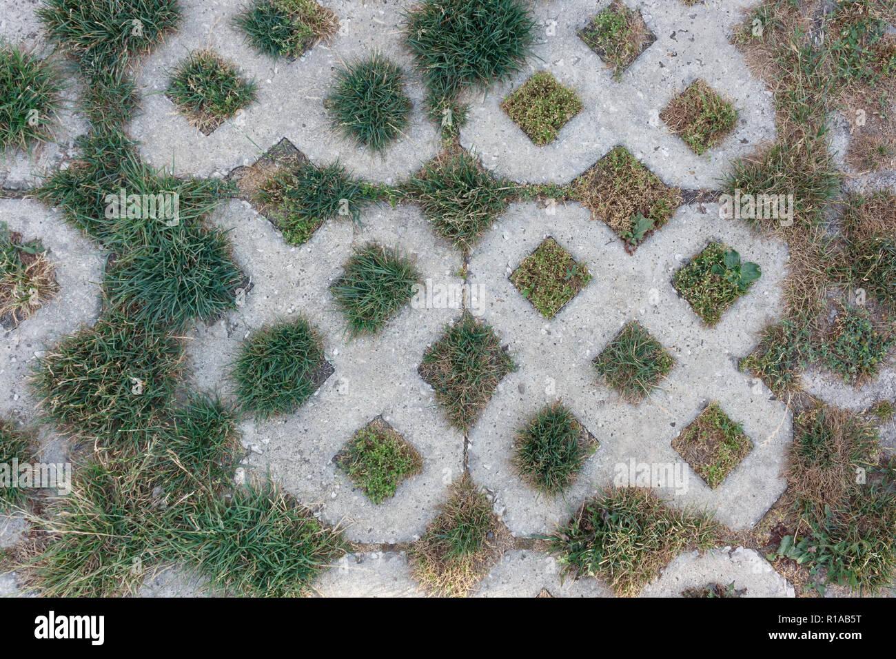 Dalle Beton Parking Herbe la texture de pavage en béton avec des gros plan de l'herbe