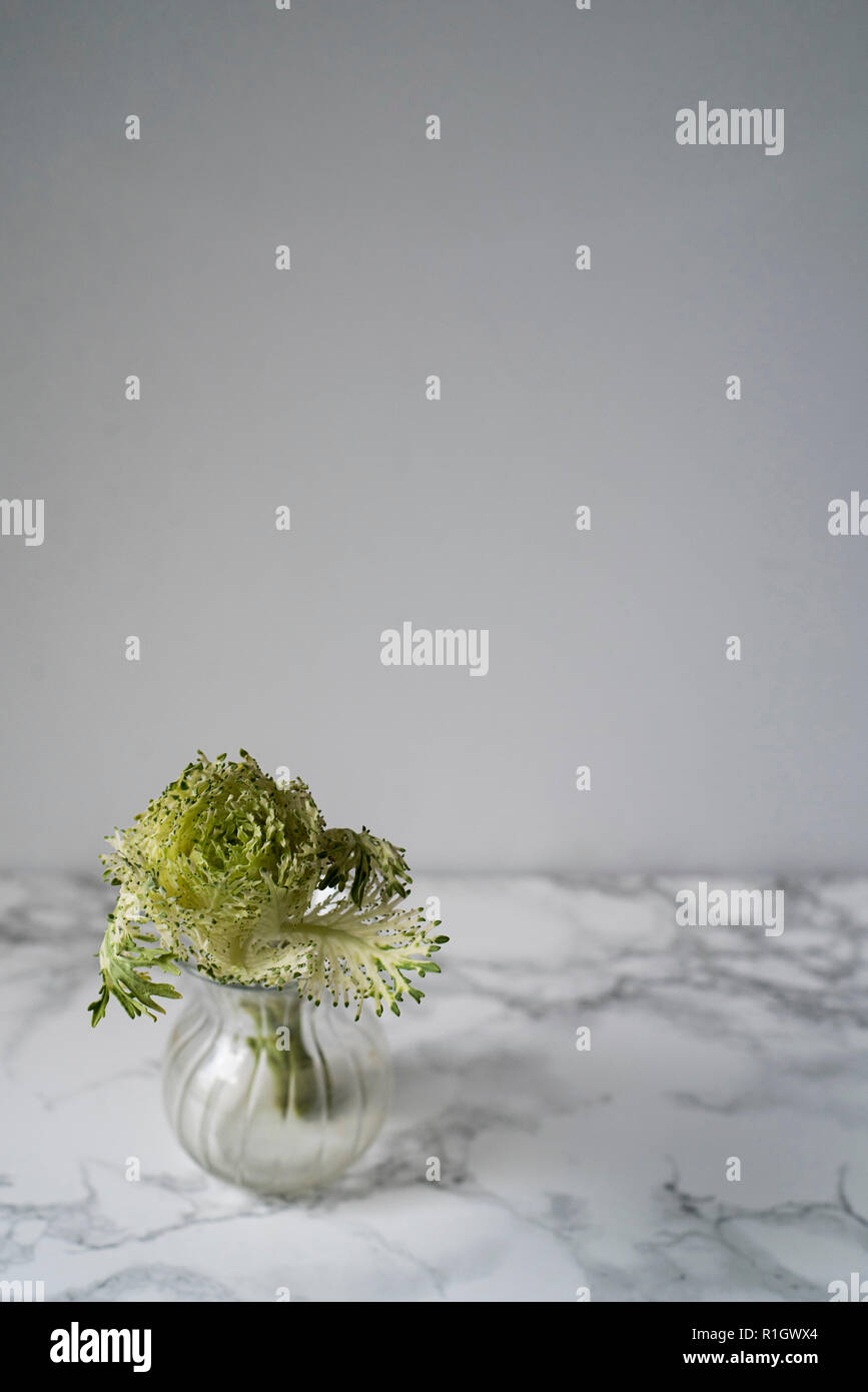 Verdure Mini charge dans une vase en verre sur un plan de travail en marbre et fond clair Photo Stock