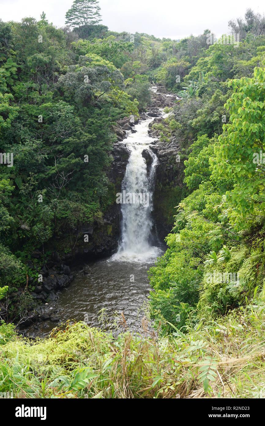 Le Kamaee tombe sur l'île d'Hawaii (Big Island) Banque D'Images