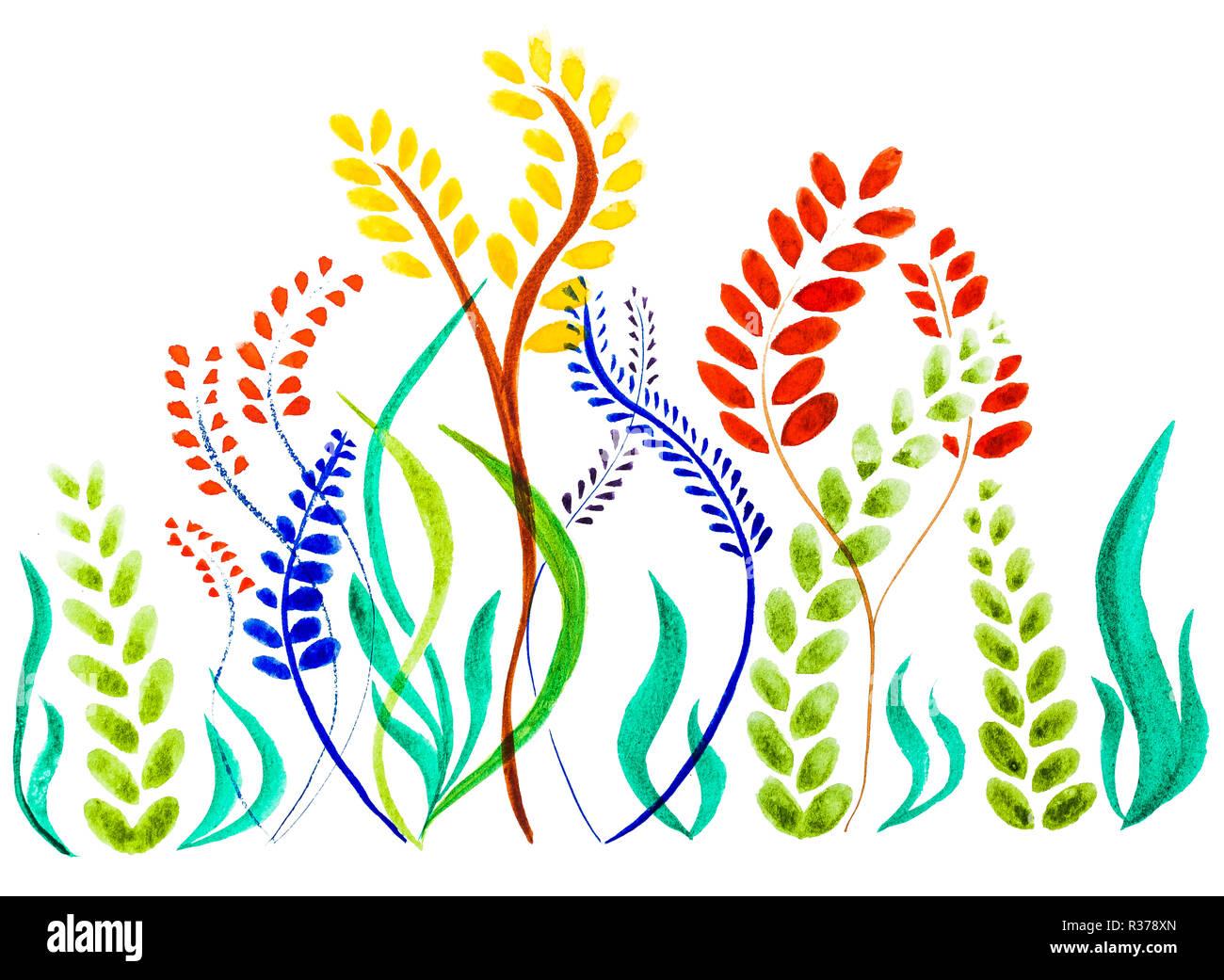 Motif Floral Aquarelle Papier Peint Fleur Delicate Fleurs Sauvages