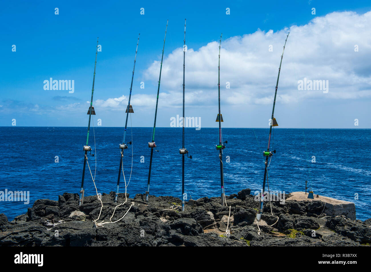 Les tiges de la pêche à la ligne sur un rocher au bord de la mer, Kalae, South Point, Big Island, Hawaii, USA Photo Stock