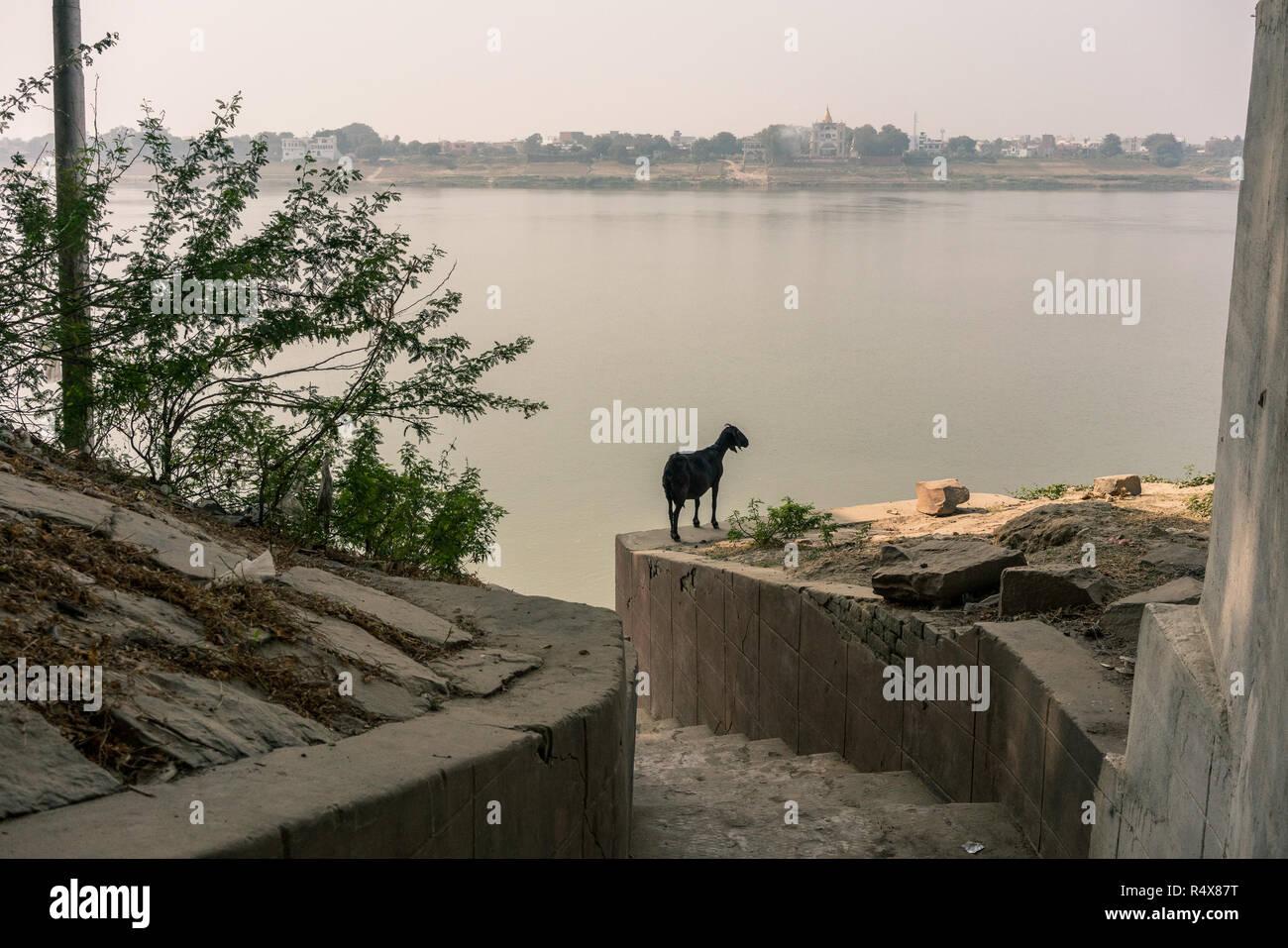 Images d'art trouvés dans les activités quotidiennes de la vie en marchant dans les ruelles du quartier de Varanasi, en Inde. Photo Stock