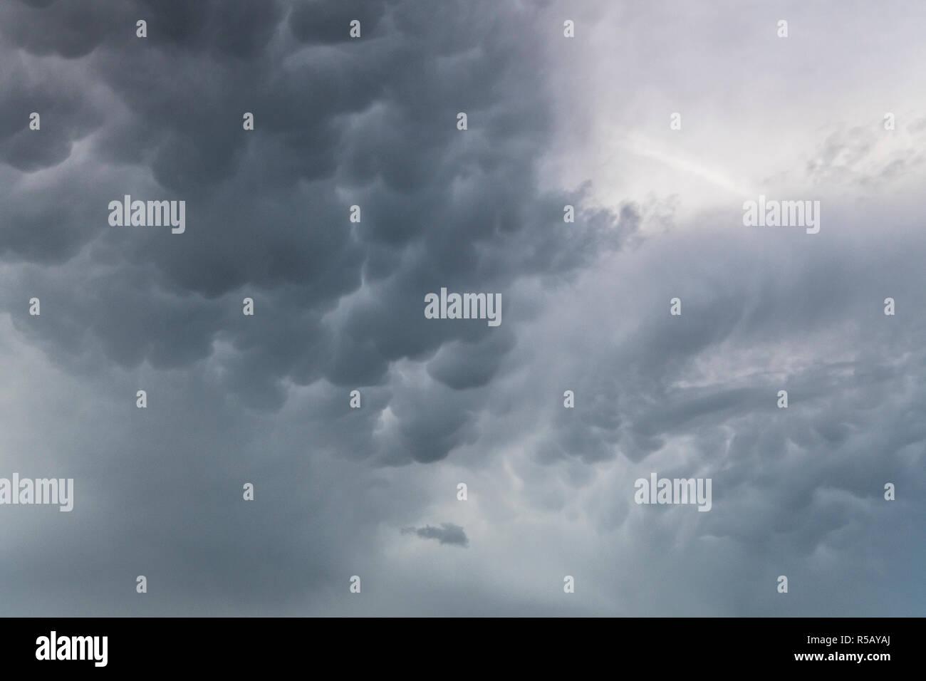 Mammatus nuages sur un champ de colza, orages, Thuringe, Allemagne Banque D'Images