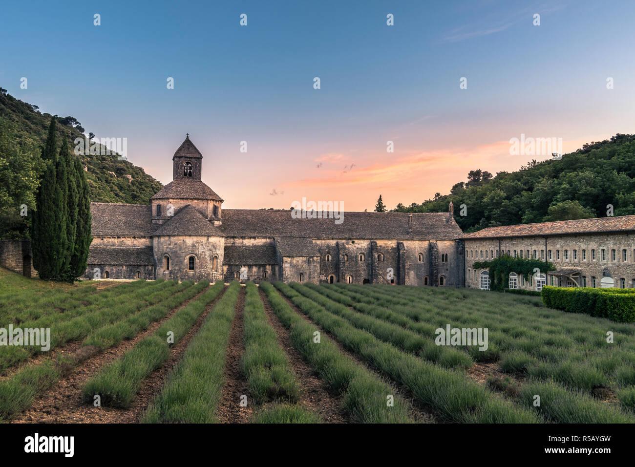 Coucher du soleil au monastère Notre-Dame de Sénanque à Gordes, Provence, Sud de France Banque D'Images