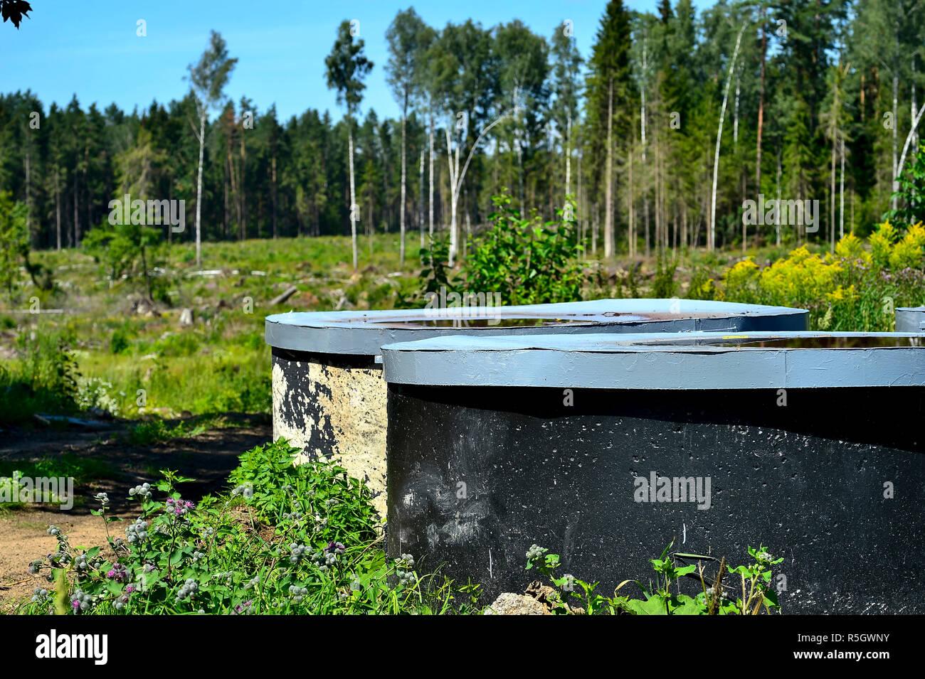 Les conteneurs dépassant du sol sur un fond d'arbres. Photo Stock