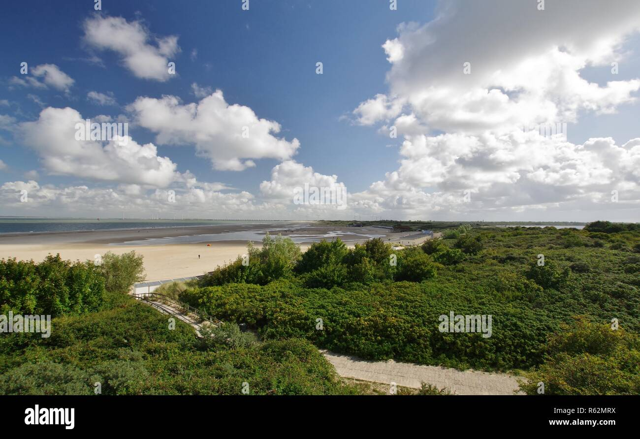 Plage de sable,dunes, mer du Nord et mer à veere Banque D'Images