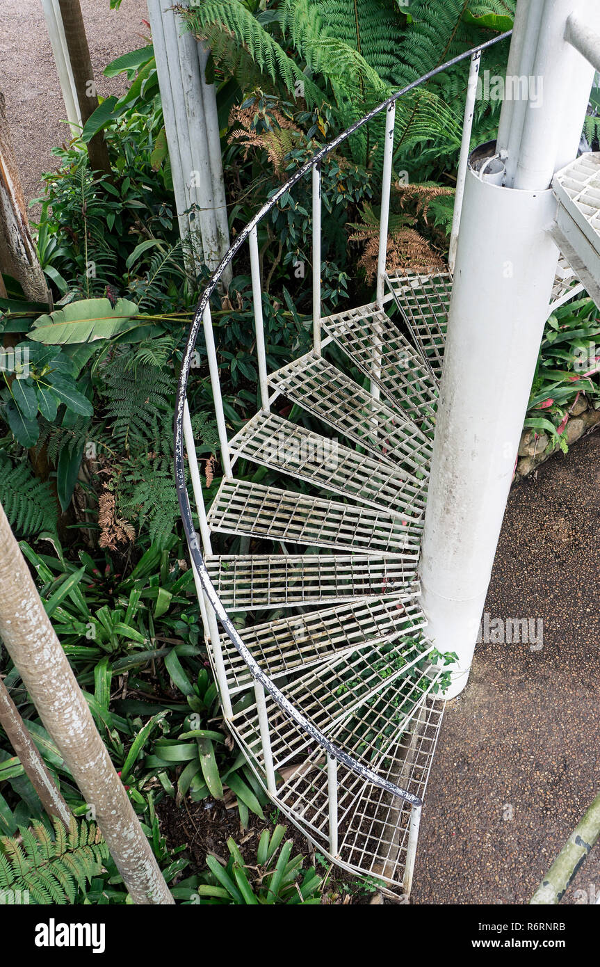 Escalier métallique en spirale à l\'intérieur jardin botanique de ...