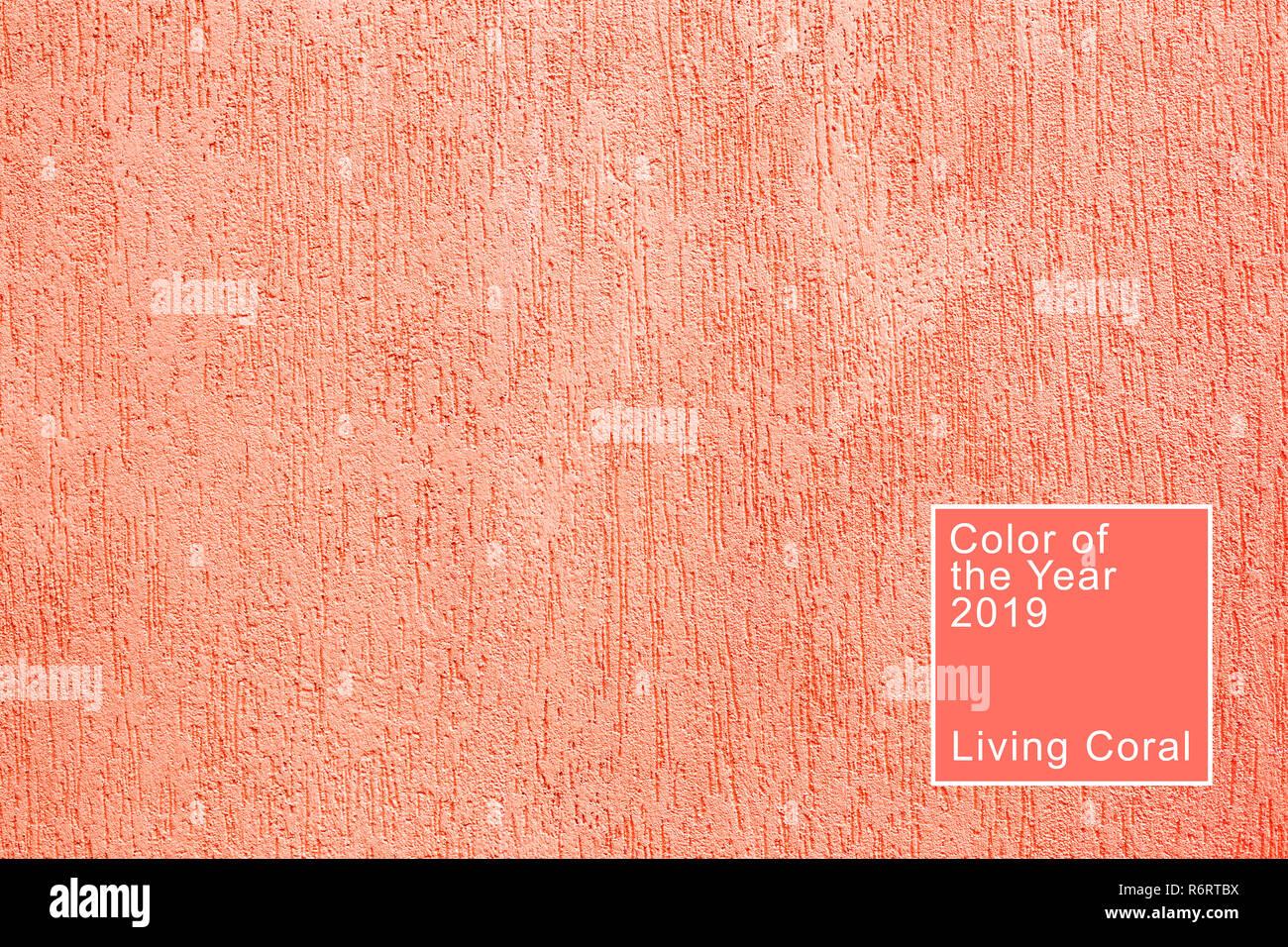 La texture des récifs de scolytes en plâtre. Corail vivant. Couleur de la 2019. Photo Stock