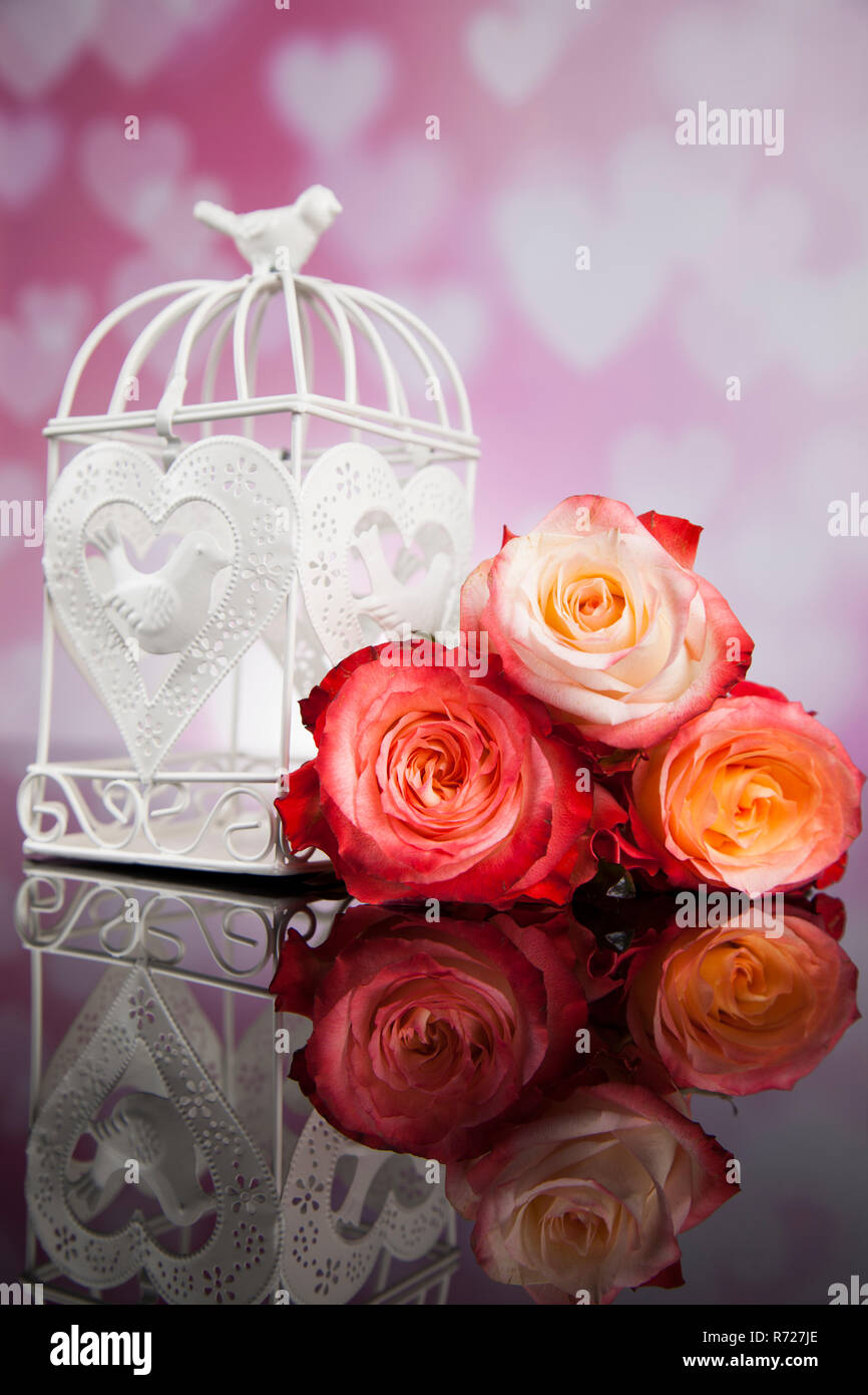 Lamour Et La Cage Lamour Romantique Vintage Background