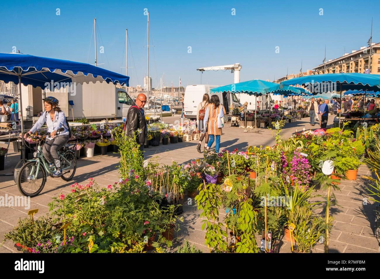 France Bouches Du Rhone Marseille Vieux Port Le Marche Aux