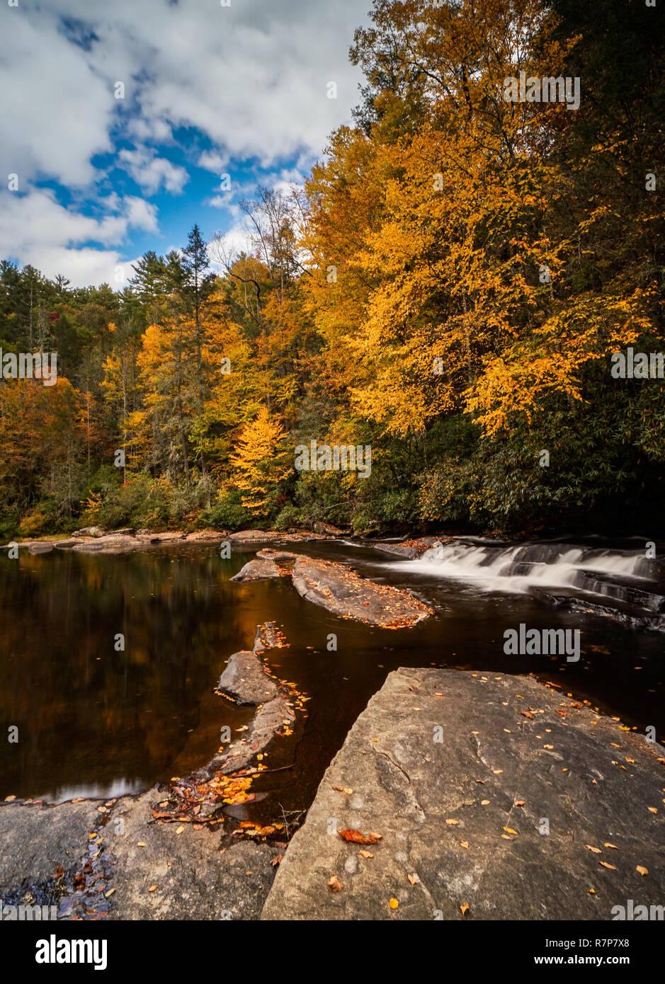 Automne feuillage coloré forêt et rivière paysage avec une petite cascade dans les Appalaches de Caroline du Nord près de chutes en Triple DuPont State Forest Banque D'Images