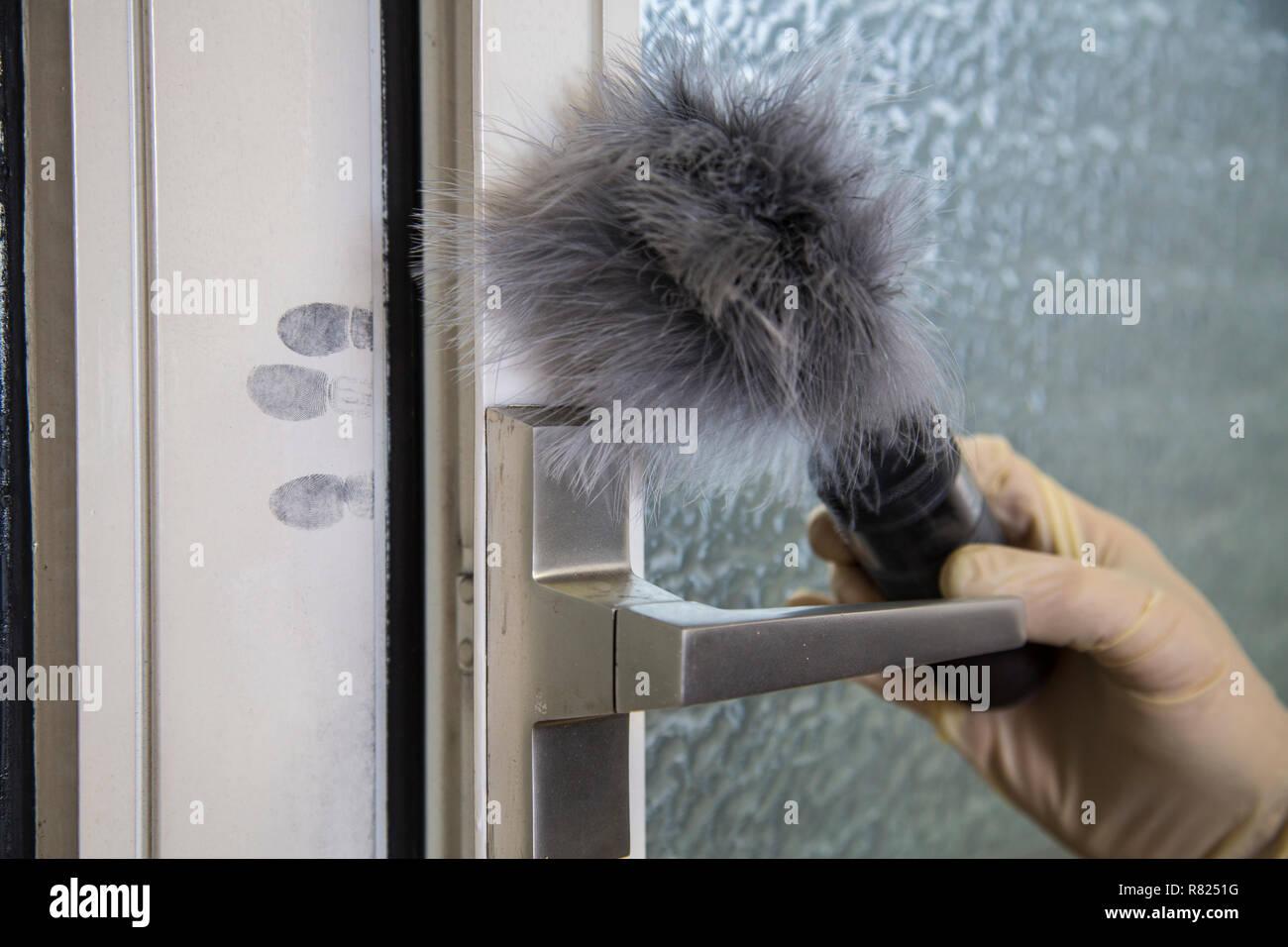 Des empreintes digitales sur une fenêtre, la médecine légale après un cambriolage, vol, Allemagne Photo Stock
