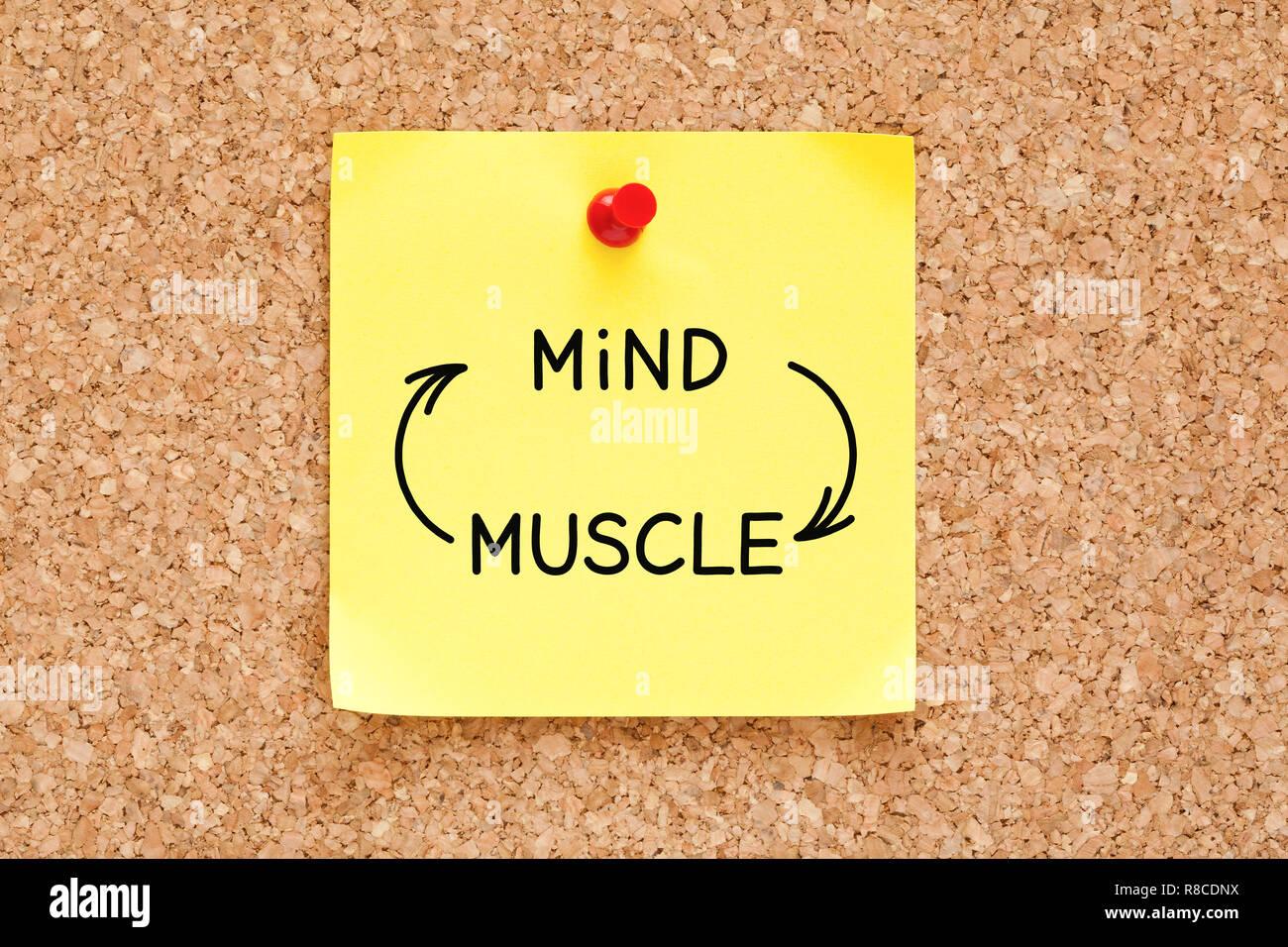 Mind-Muscle flèches connexion concept written on yellow sticky note épinglée sur panneau de liège. Banque D'Images