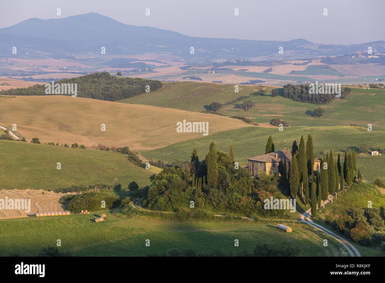Italie, Toscane, Val d'Orcia, classé au Patrimoine Mondial de l'UNESCO, campagne près de Pienza avec vue sur le Mont Amiata (1738m) Photo Stock