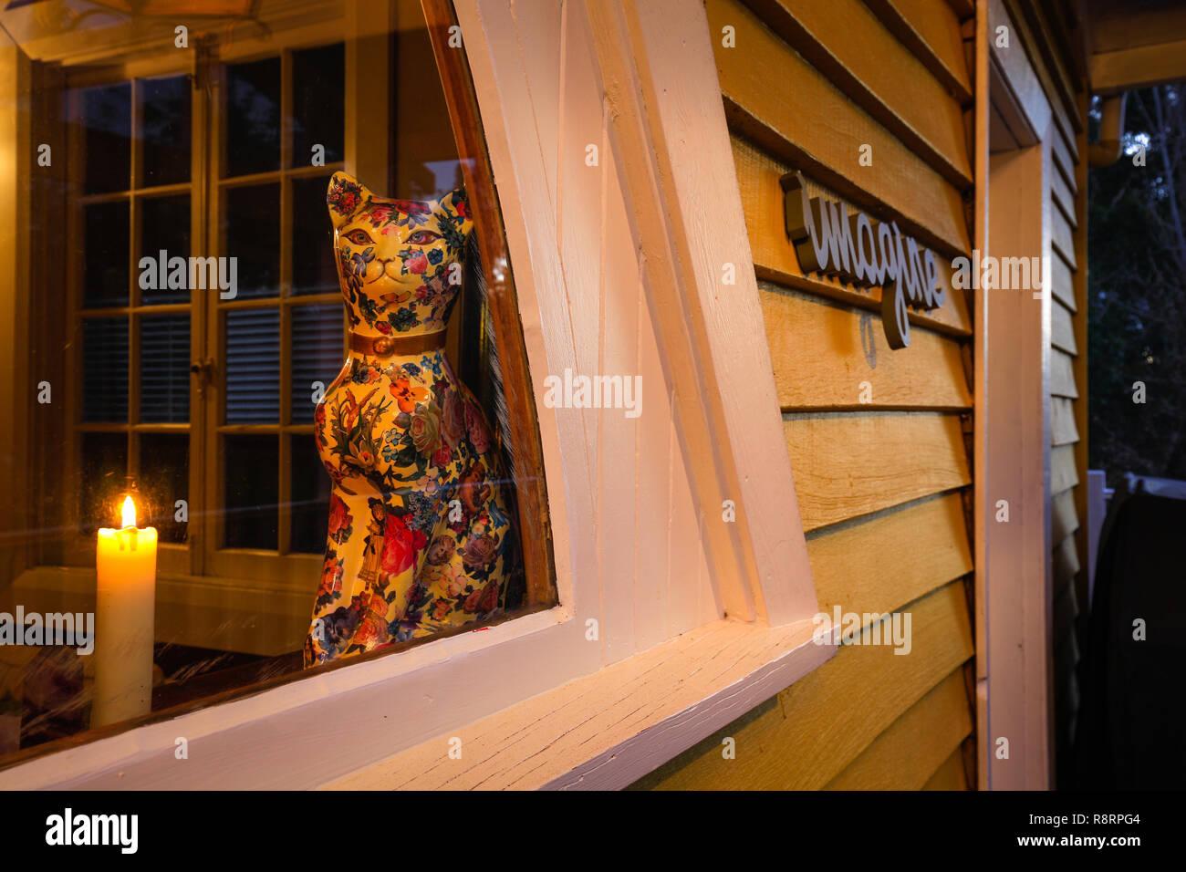 Dans la fenêtre de chat Photo Stock