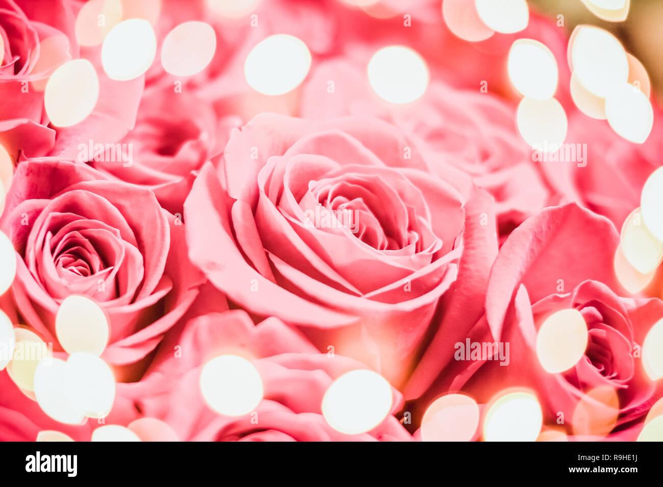 Rose Rose Elegante De Fete Avec Feux De Bokeh Joyeux Anniversaire