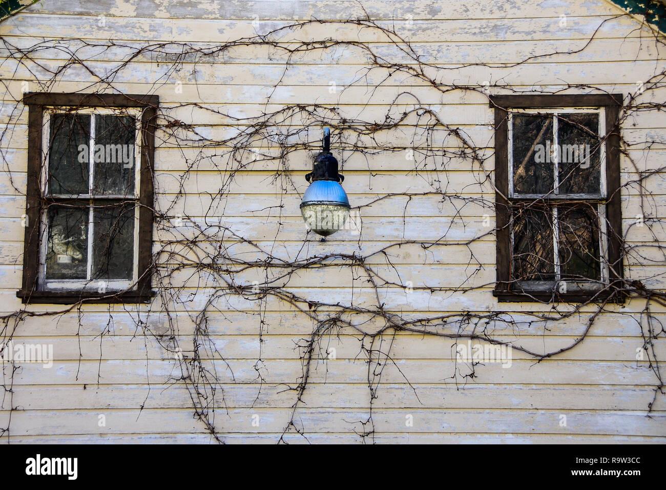 Vintage blue street light, et des vignes à l'avant d'un bâtiment ancien. Photo Stock