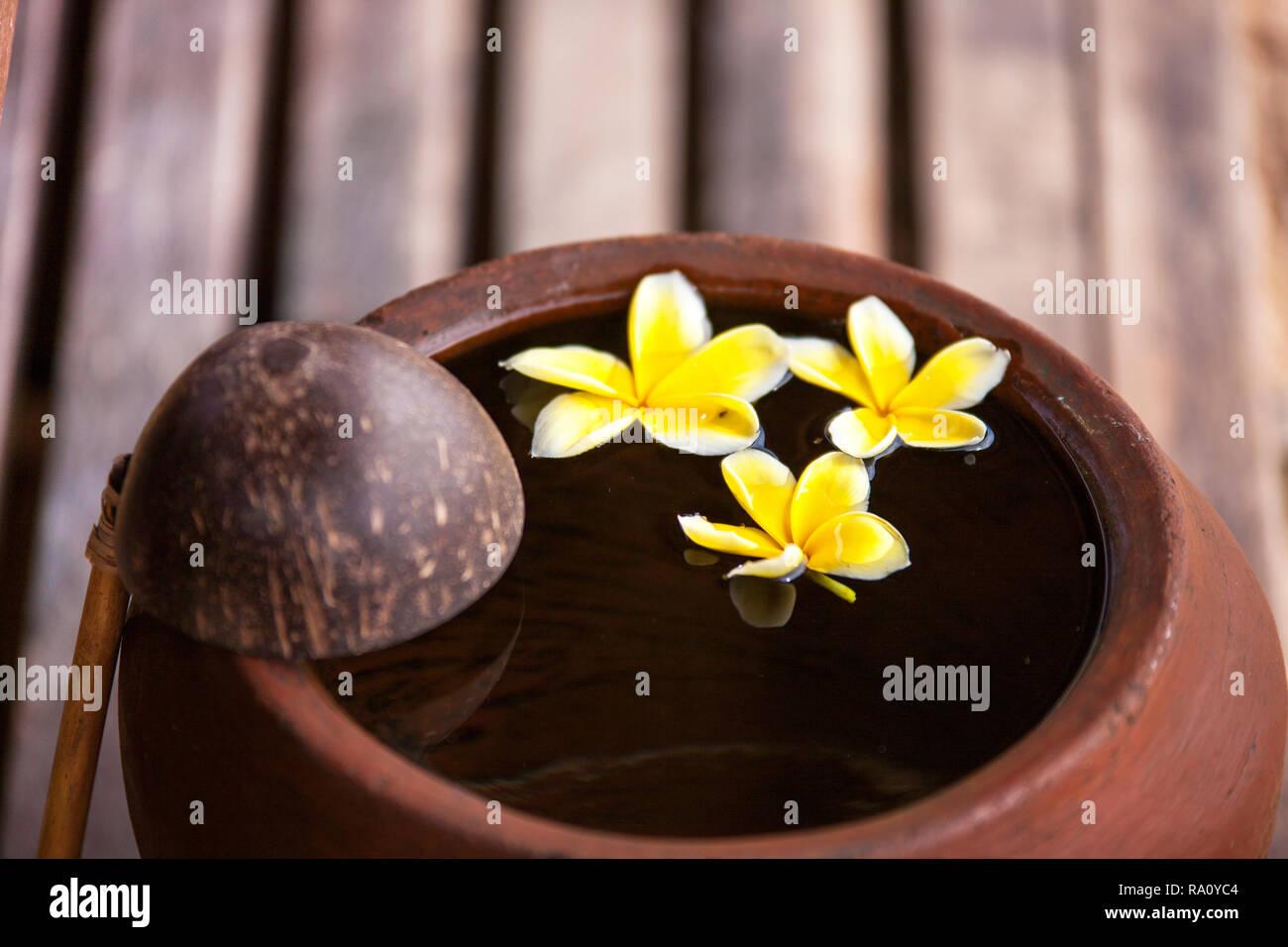 Toucher la nature  Pot en argile paisible et relaxant à la