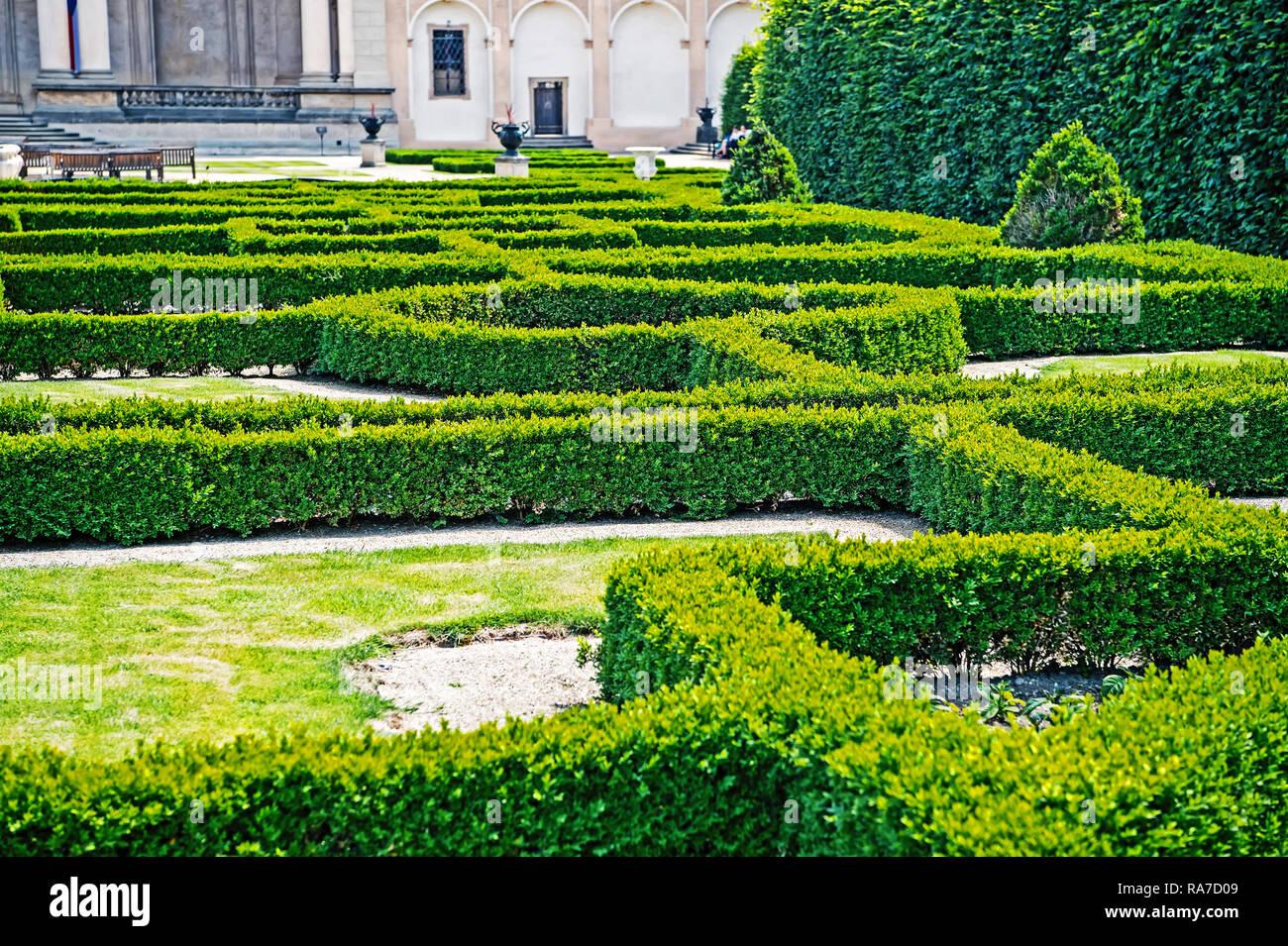 Labyrinthe de plantes vertes en jardin de Prague, République tchèque ...