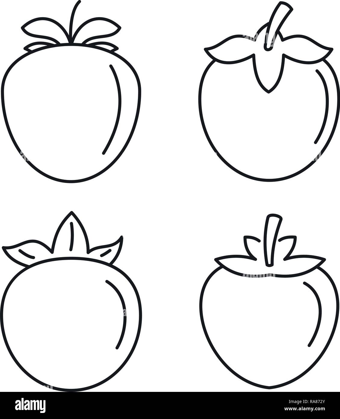 Coloriage Fruit Kaki.Isolated Outline Fruit Vector Illustration Photos Isolated Outline