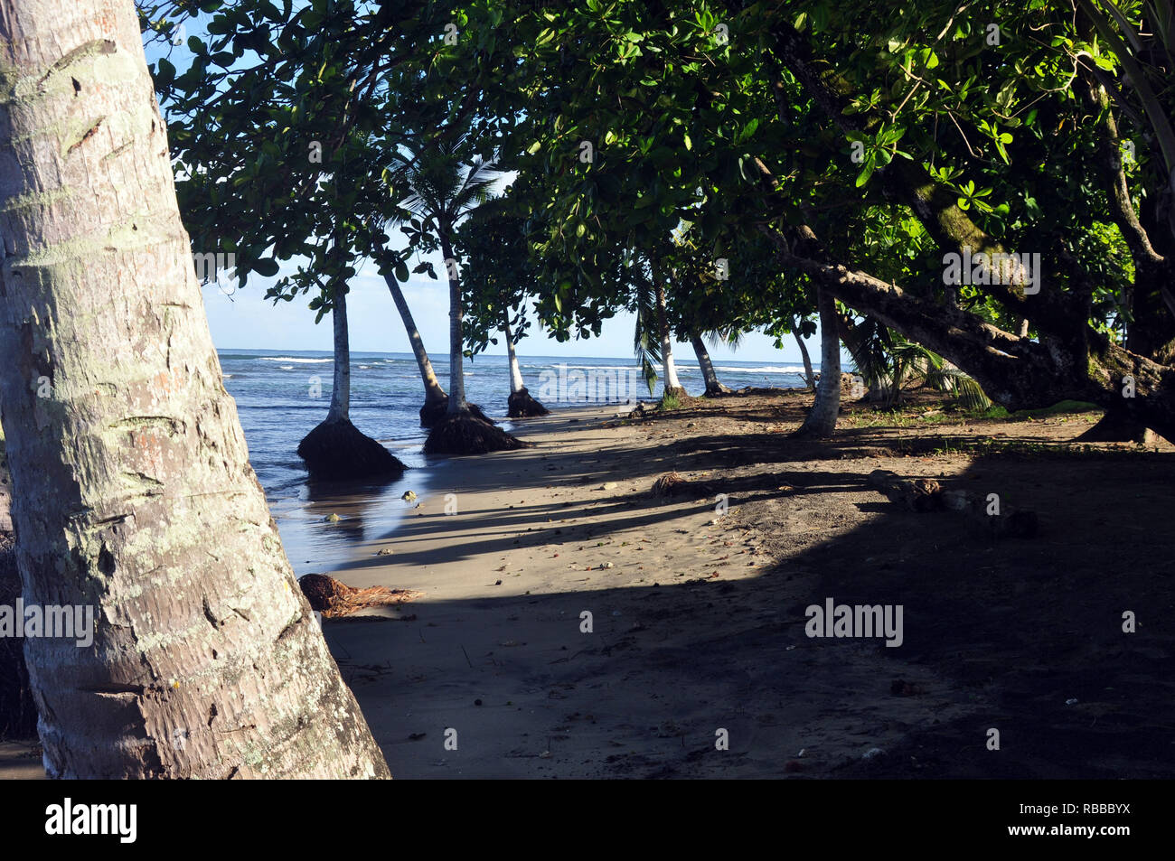 Plage bordée d'un terrain vacant à Puerto Viejo, Costa Rica Photo Stock