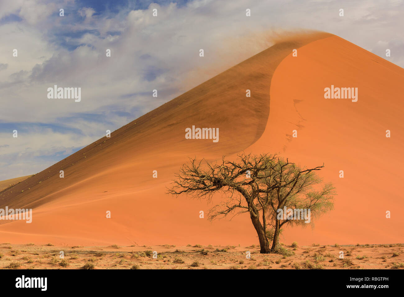Sel Sossusvlei poêle avec des dunes de sable rouge dans le désert de Namib, Namibie, Afrique. Banque D'Images
