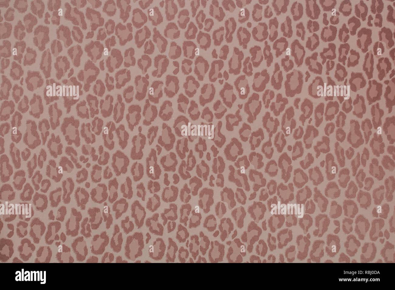 Leopard animal sauvage ou texture de fond d'écran, filtre coloré concept Banque D'Images