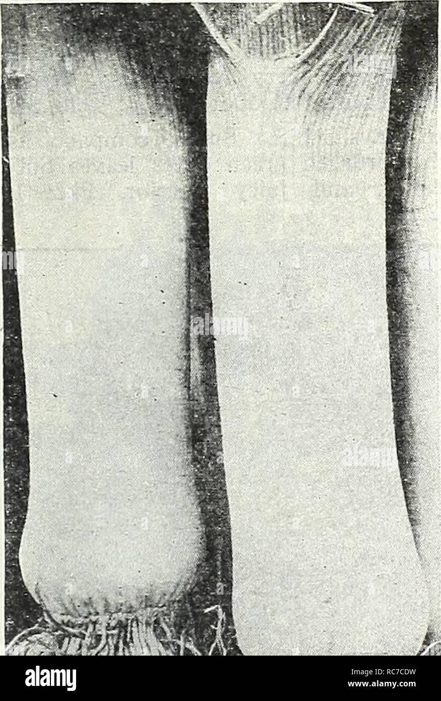 PISTONE HUSQVARNA 335 XTP