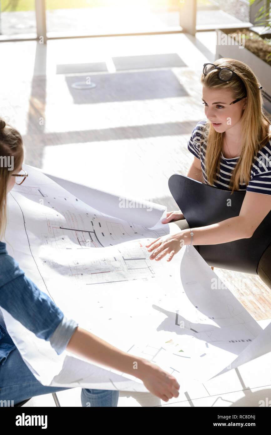 Remue-méninges sur les collègues des graphiques dans le plein soleil Banque D'Images