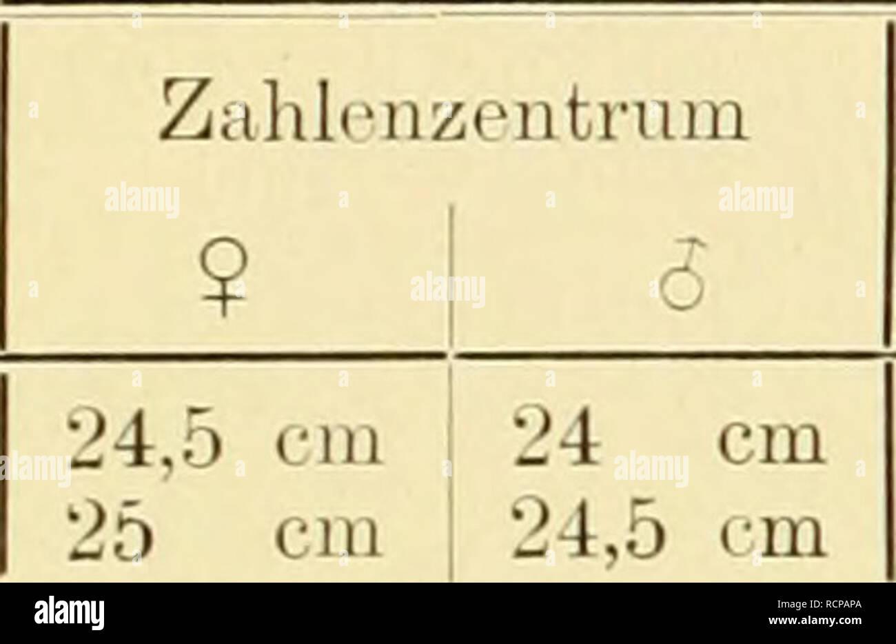 Alte Berufe Bauer Alte Kette Eisenkette Old Iron Chain 23+44+44cm Wir Haben Lob Von Kunden Gewonnen