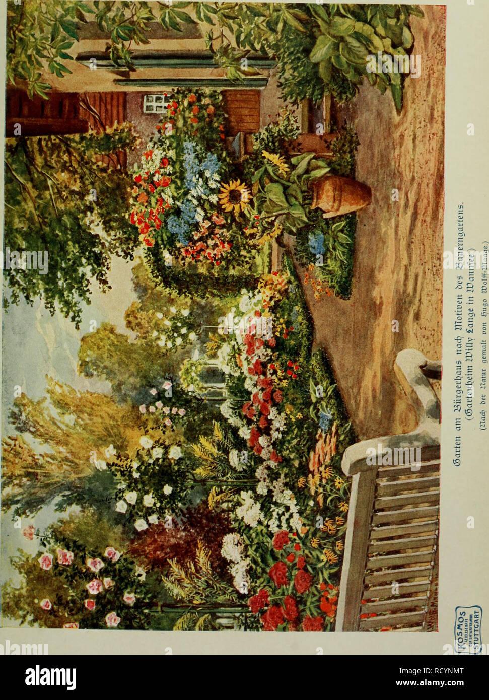 . Das Leben der Pflanze. Les plantes; plantes; plantes; phytogéographie. . Veuillez noter que ces images sont extraites de la page numérisée des images qui peuvent avoir été retouchées numériquement pour plus de lisibilité - coloration et l'aspect de ces illustrations ne peut pas parfaitement ressembler à l'œuvre originale.. Francé, R. H. (Raoul Heinrich), 1874-1943; Gothan, Walther Ulrich Eduard Friedrich, 1879-1954; Lange, Willy, 1864-. Stuttgart, Kosmos, Gesellschaft der Naturfreunde Banque D'Images