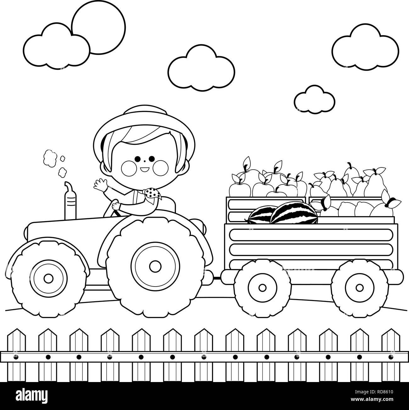 Fermier A La Ferme Et Conduire Un Tracteur Transportant Des Fruits