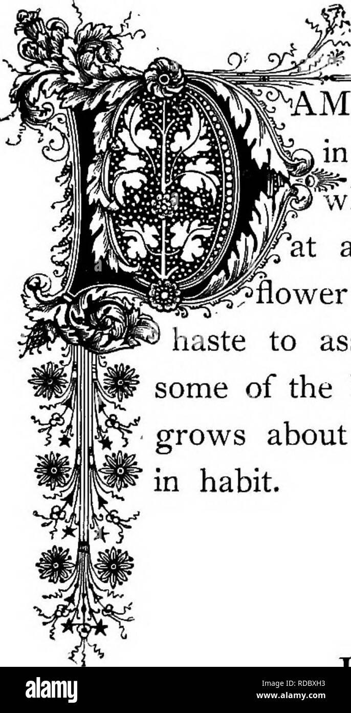 Le Royaume Floral Son Histoire Le Sentiment Et La Poésie
